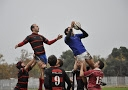 Photographies Club Rugby 29 Novembre 2014